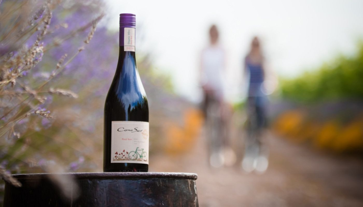 Fine Eco-Friendly Wine – Cono Sur Wines at the Lodge on Lake Detoit