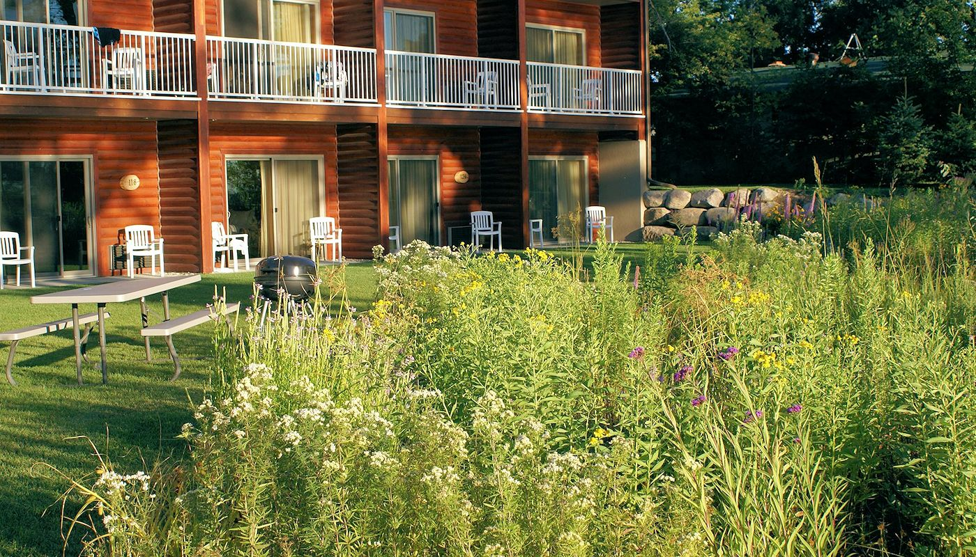 Rain Garden at the Lodge on Lake Detroit