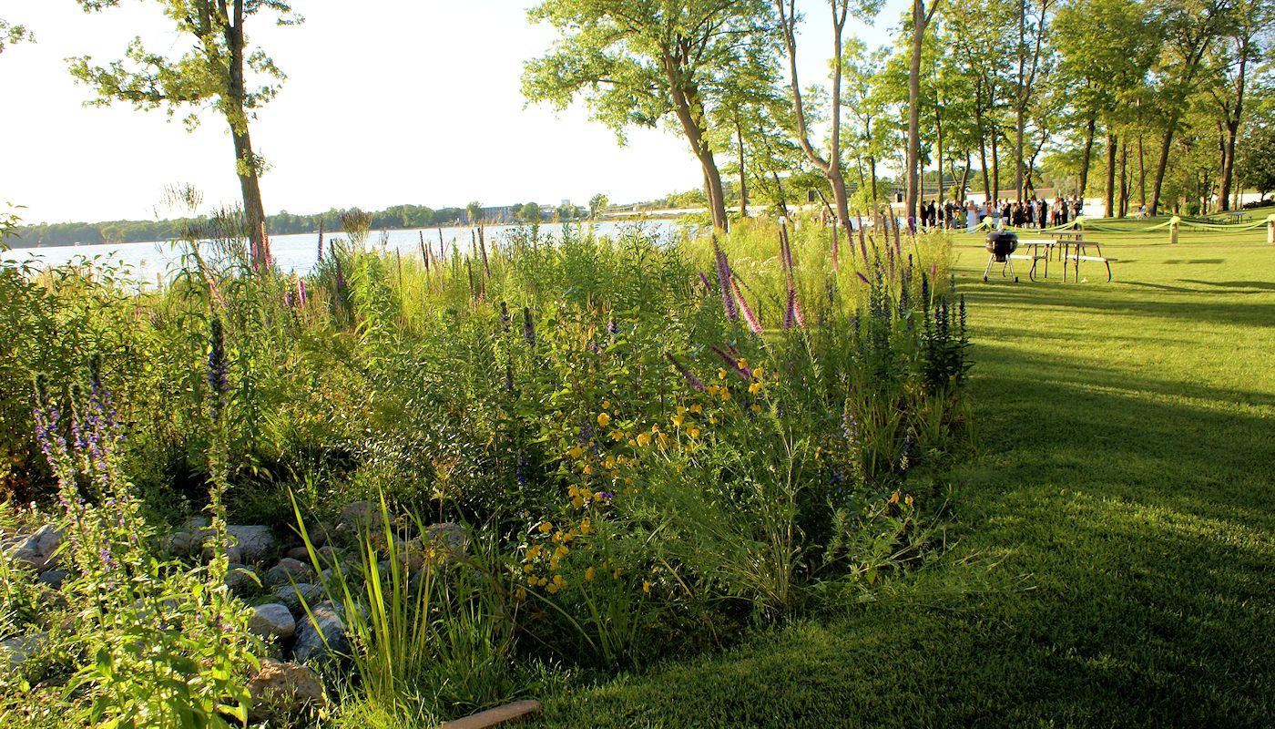 Rain Garden - Minnesota Eco Hotel - The Lodge on Lake Detroit