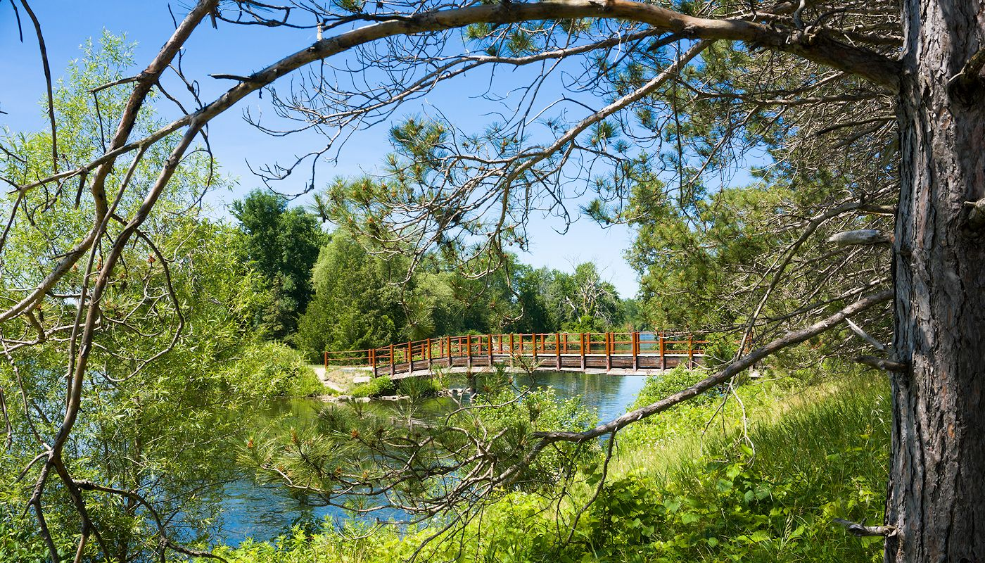 Itasca State Park & Mississippi Headwaters